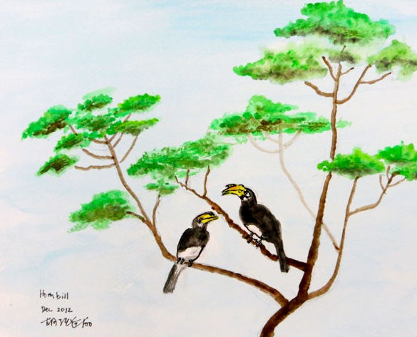 Hornbill seen on the tree tops in our Housing Estate at Bukit Timah (犀鸟喜上树梢 武吉知马居宅), 2012